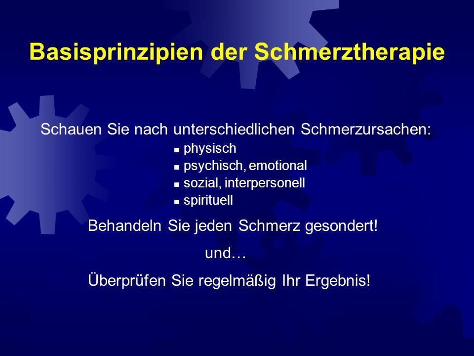 Basisprinzipien der Schmerztherapie