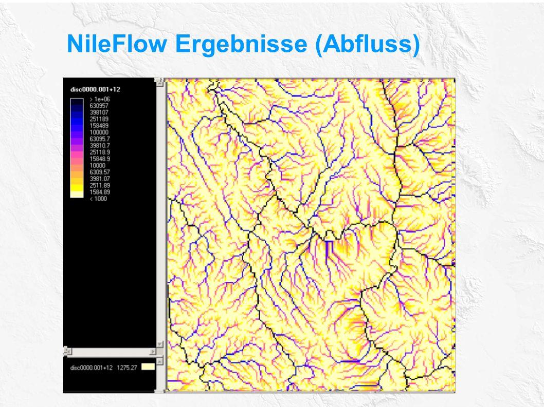 NileFlow Ergebnisse (Abfluss)