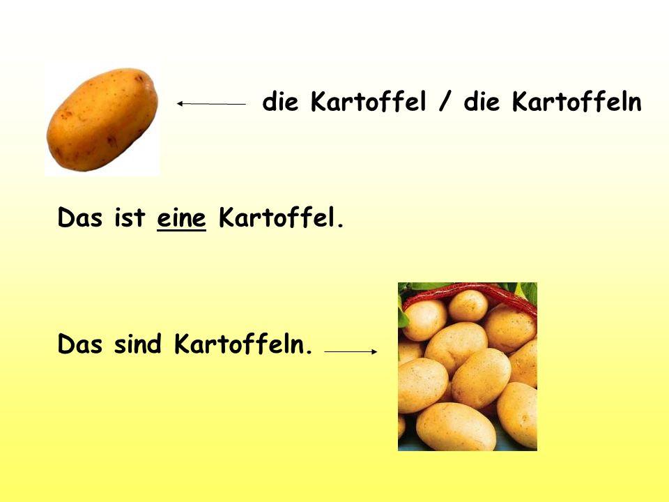 die Kartoffel / die Kartoffeln