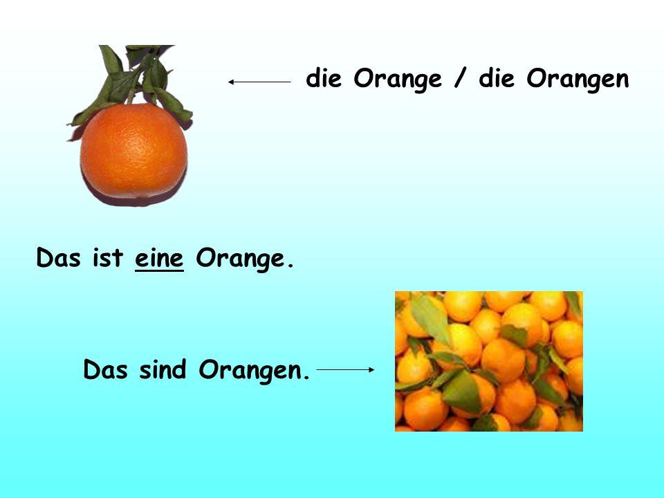 die Orange / die Orangen
