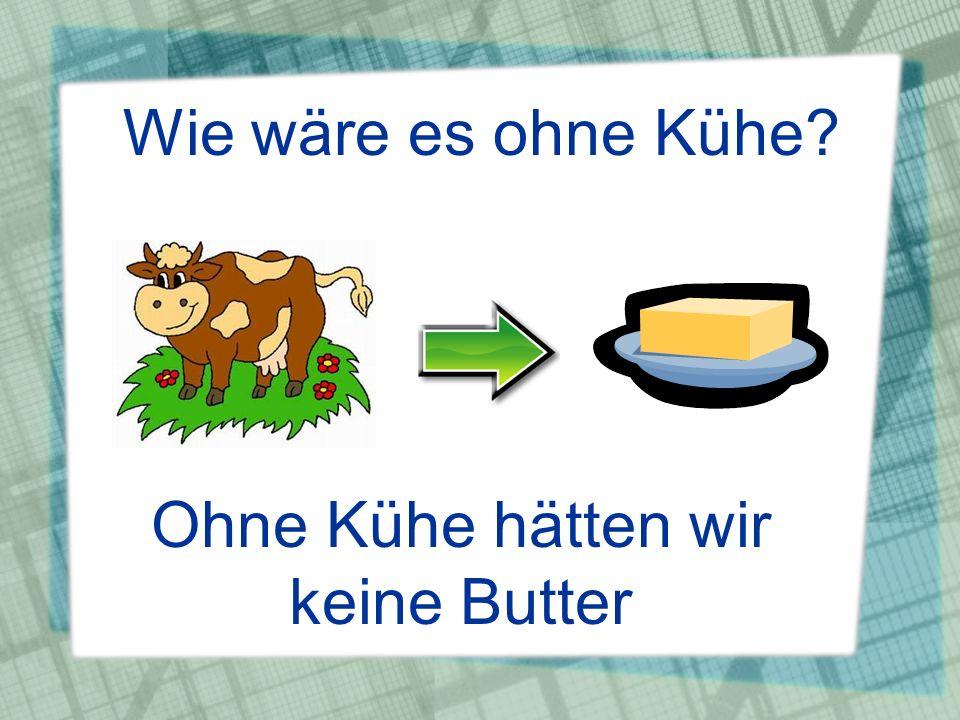 Ohne Kühe hätten wir keine Butter