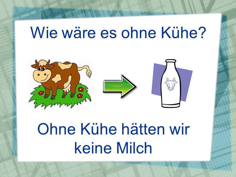 Ohne Kühe hätten wir keine Milch
