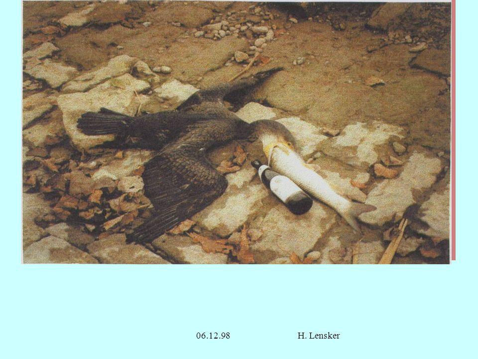 Ende 06.12.98 H. Lensker