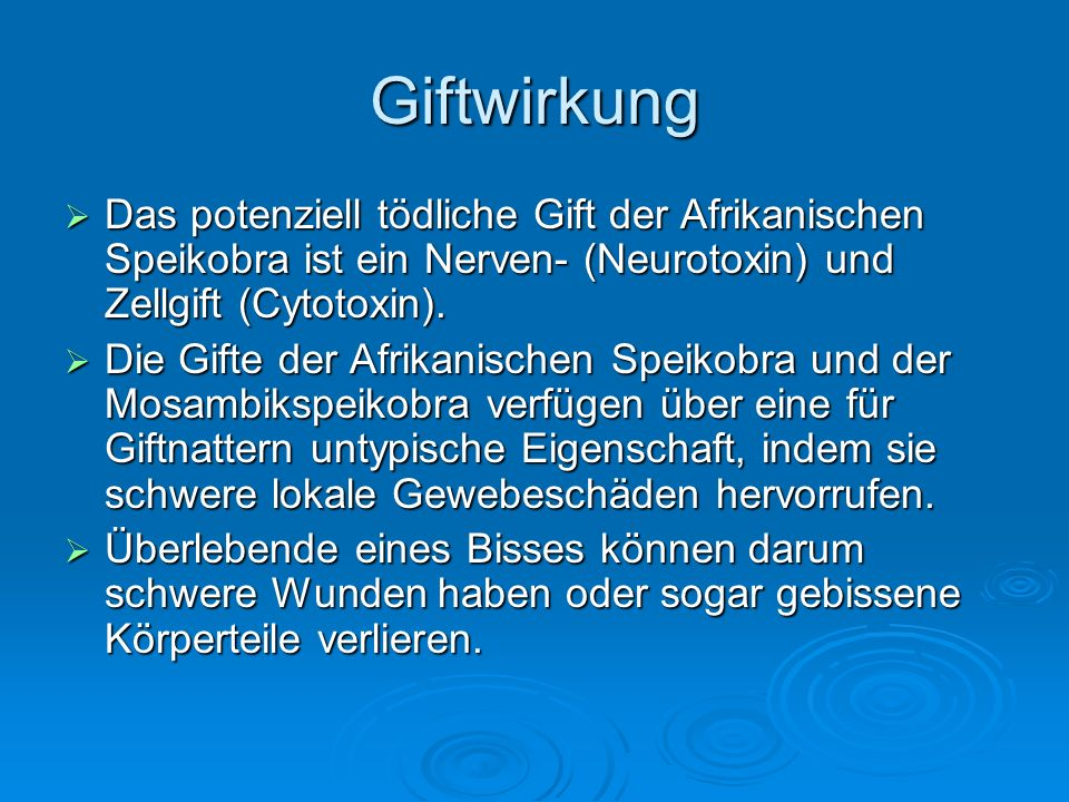 Giftwirkung Das potenziell tödliche Gift der Afrikanischen Speikobra ist ein Nerven- (Neurotoxin) und Zellgift (Cytotoxin).