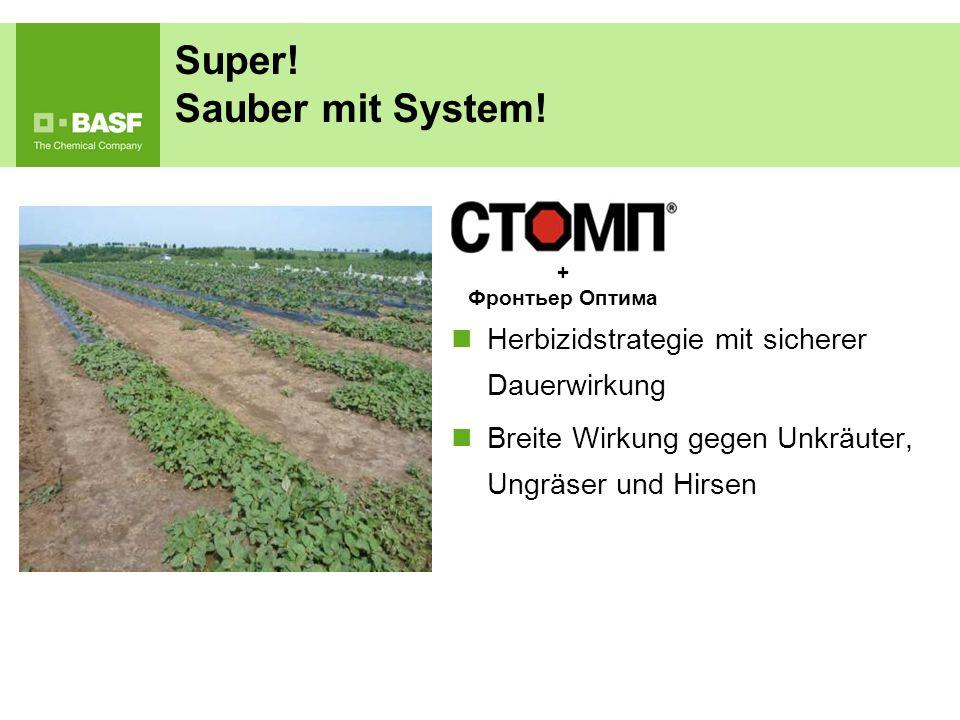 Super! Sauber mit System!