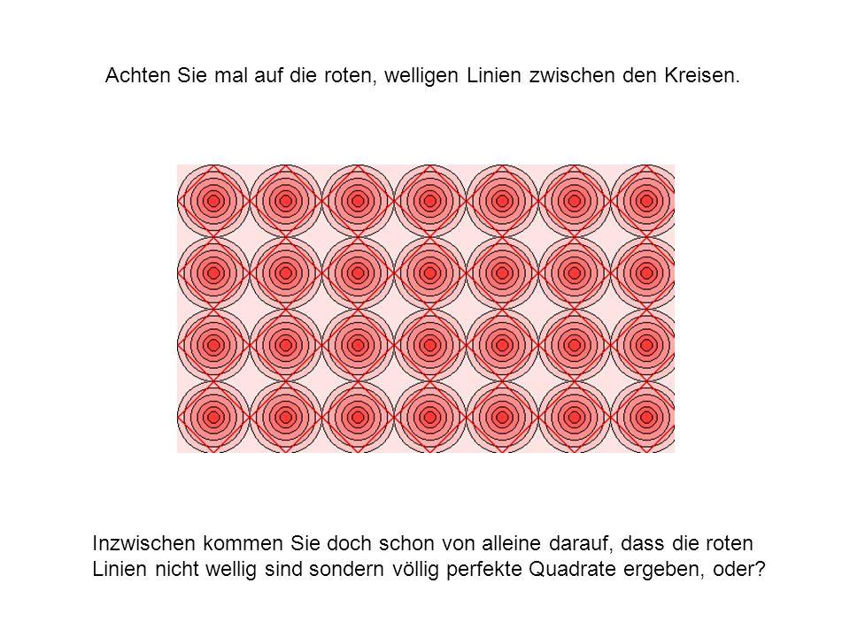 Achten Sie mal auf die roten, welligen Linien zwischen den Kreisen.