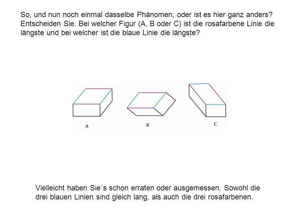 So, und nun noch einmal dasselbe Phänomen; oder ist es hier ganz anders Entscheiden Sie. Bei welcher Figur (A, B oder C) ist die rosafarbene Linie die längste und bei welcher ist die blaue Linie die längste