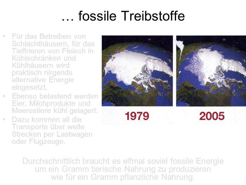 … fossile Treibstoffe