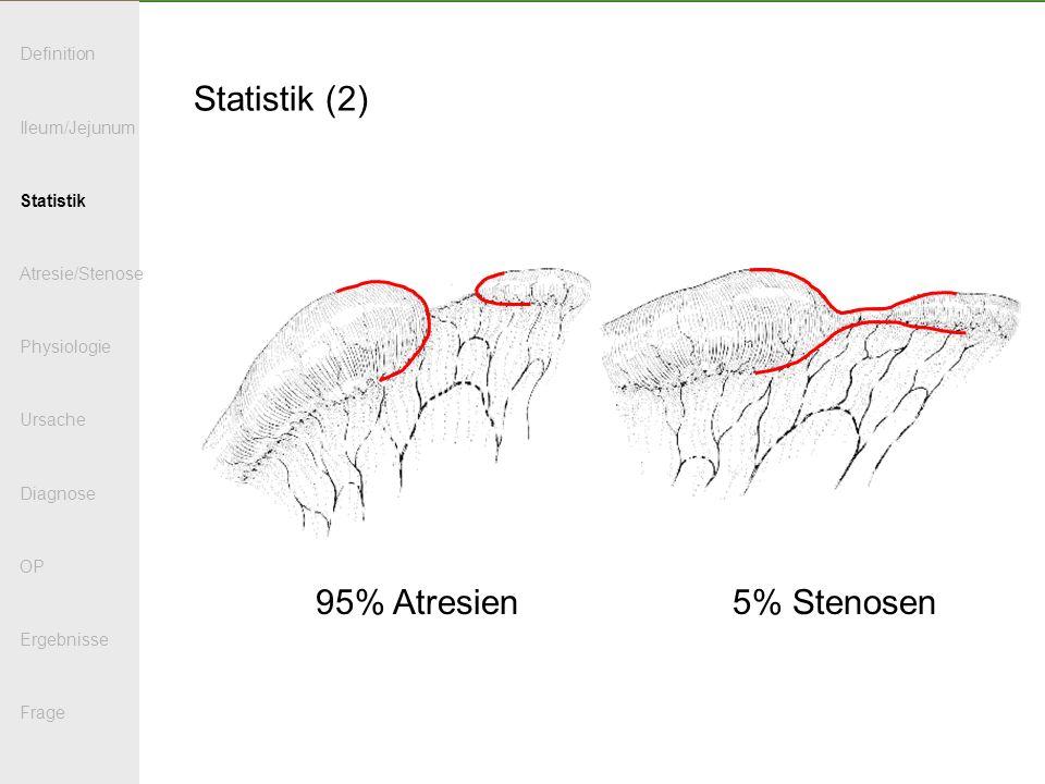 Statistik (2) 95% Atresien 5% Stenosen Definition Ileum/Jejunum