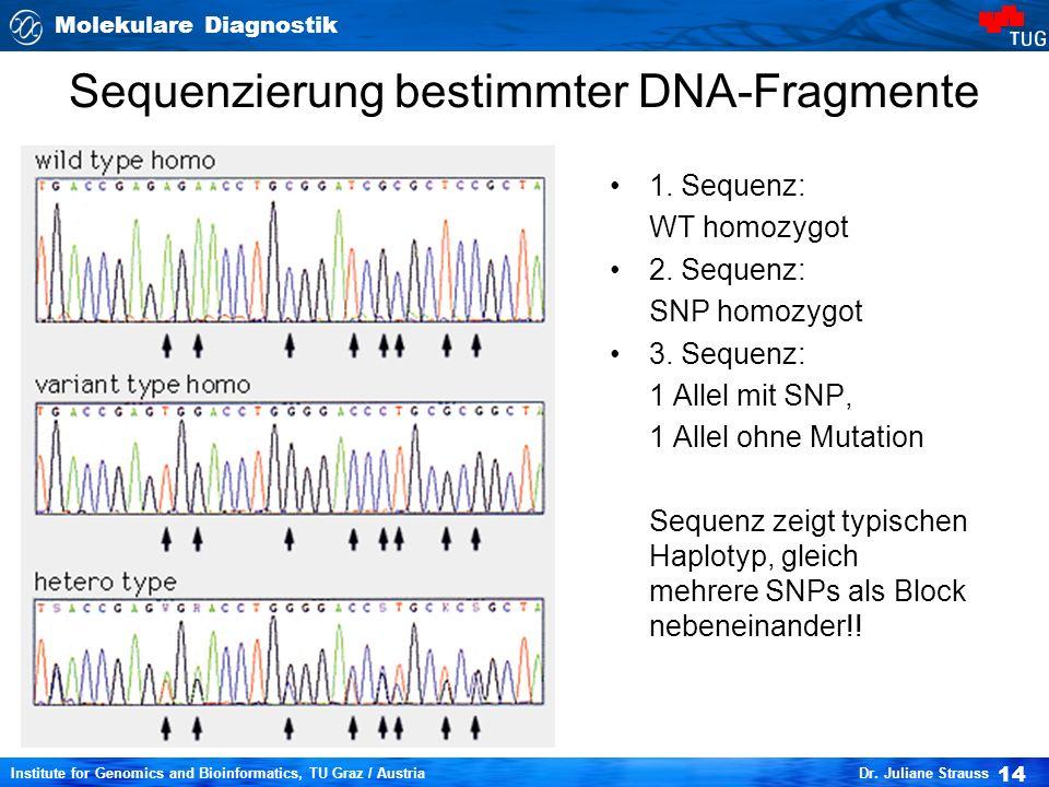 Sequenzierung bestimmter DNA-Fragmente