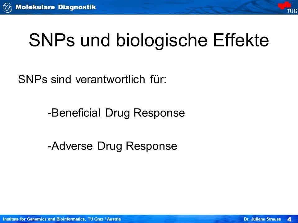 SNPs und biologische Effekte