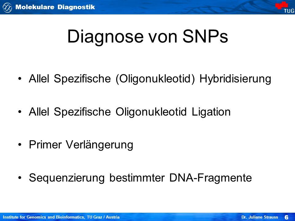 Diagnose von SNPs Allel Spezifische (Oligonukleotid) Hybridisierung