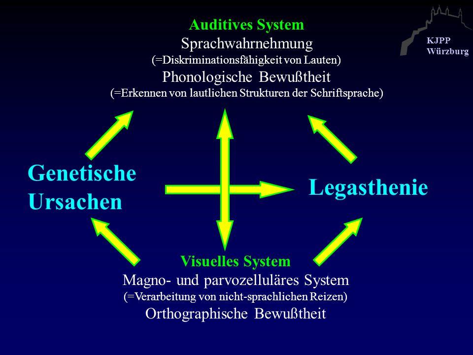 Genetische Ursachen Legasthenie Auditives System Sprachwahrnehmung