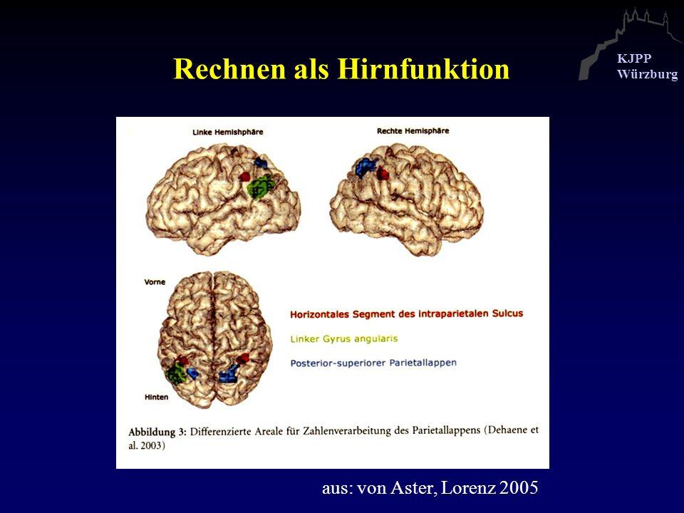 Rechnen als Hirnfunktion