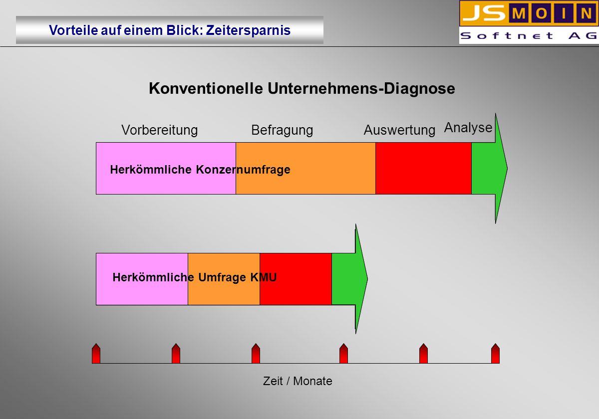Konventionelle Unternehmens-Diagnose
