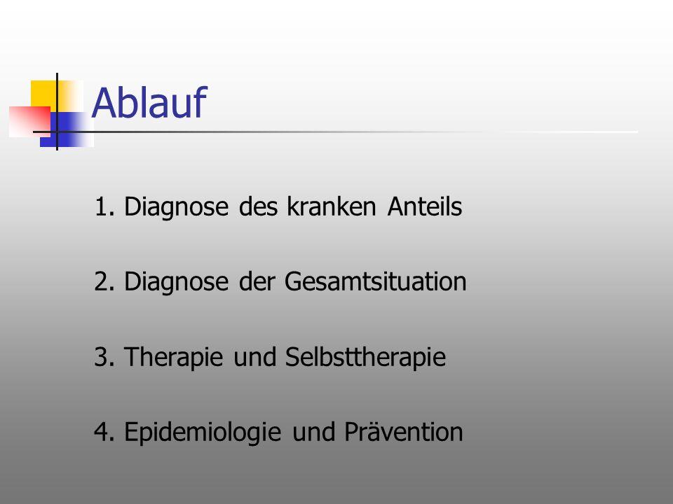 Ablauf 1. Diagnose des kranken Anteils 2. Diagnose der Gesamtsituation