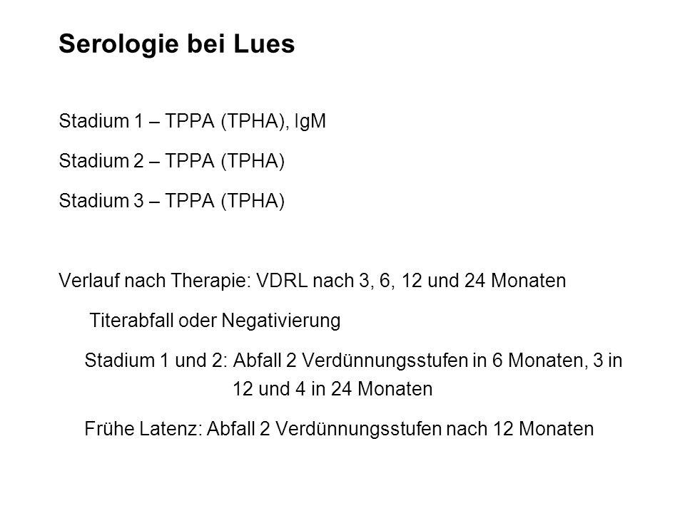 Serologie bei Lues Stadium 1 – TPPA (TPHA), IgM