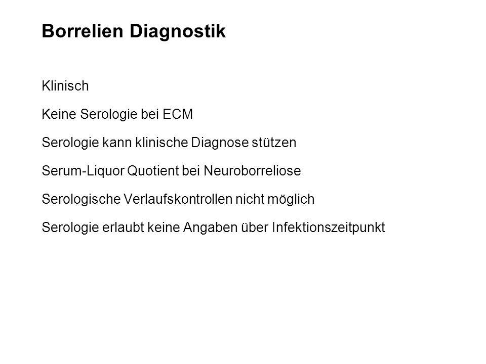 Borrelien Diagnostik Klinisch Keine Serologie bei ECM