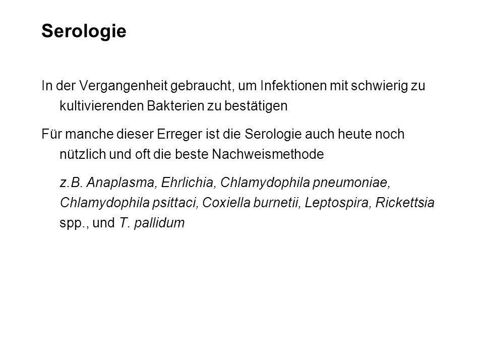 Serologie In der Vergangenheit gebraucht, um Infektionen mit schwierig zu kultivierenden Bakterien zu bestätigen.