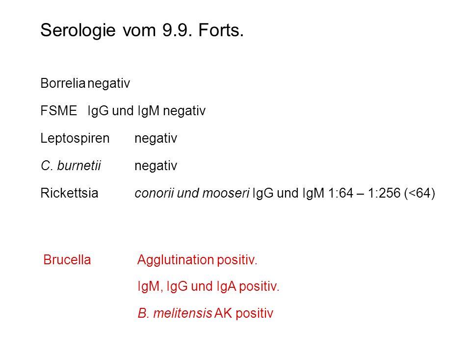 Serologie vom 9.9. Forts. Borrelia negativ FSME IgG und IgM negativ