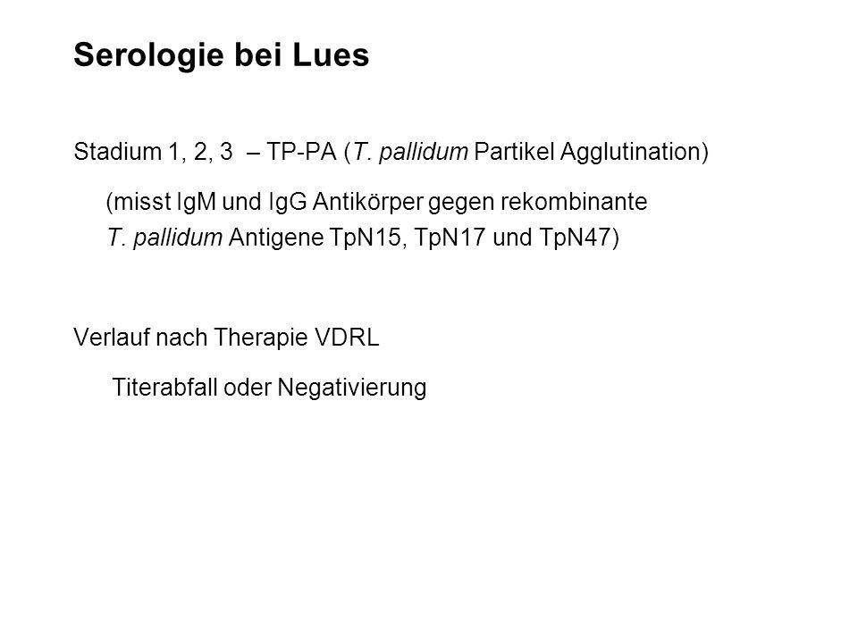 Serologie bei Lues Stadium 1, 2, 3 – TP-PA (T. pallidum Partikel Agglutination)