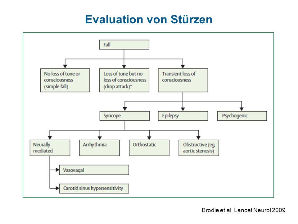 Evaluation von Stürzen