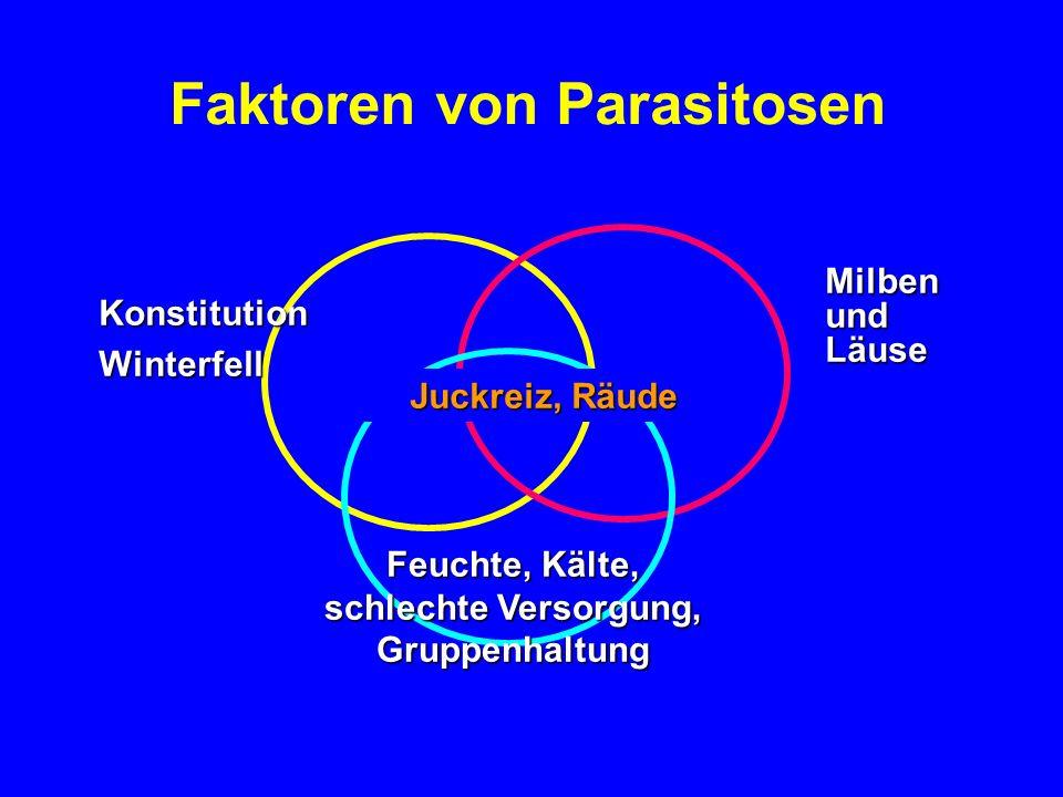 Faktoren von Parasitosen