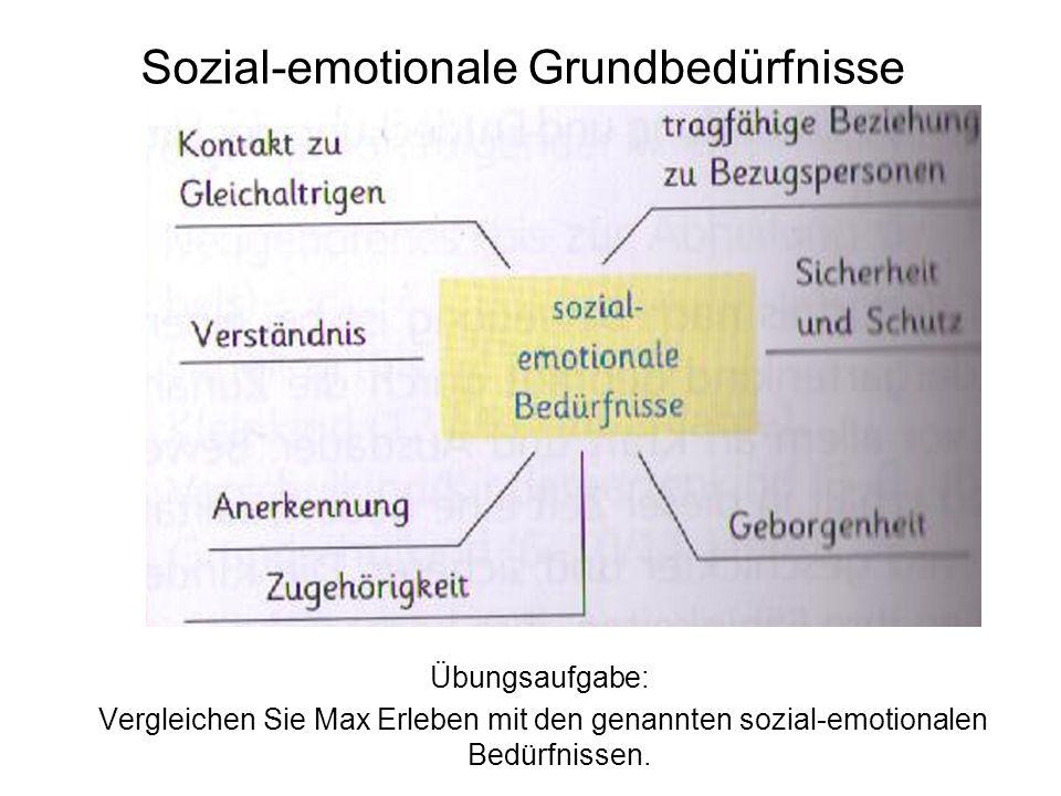 Sozial-emotionale Grundbedürfnisse