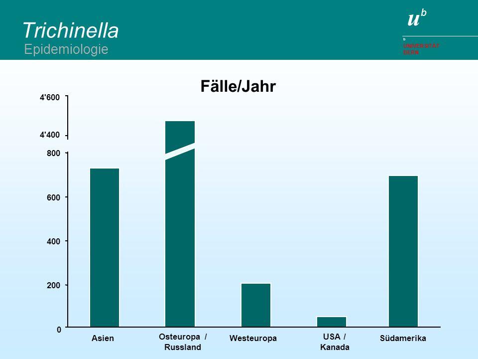 Trichinella Fälle/Jahr Epidemiologie 4 600 4 400 800 600 400 200 Asien
