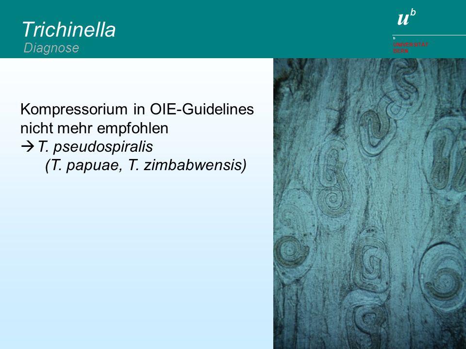 Trichinella Kompressorium in OIE-Guidelines nicht mehr empfohlen