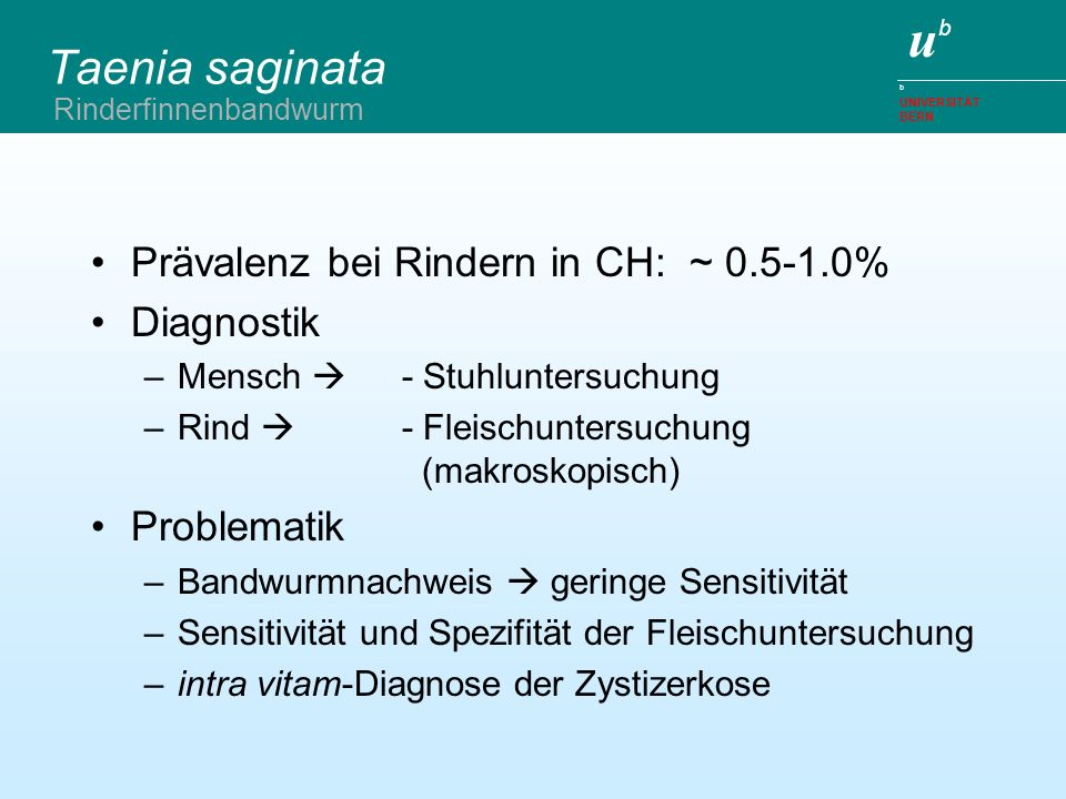 Taenia saginata Prävalenz bei Rindern in CH: ~ 0.5-1.0% Diagnostik