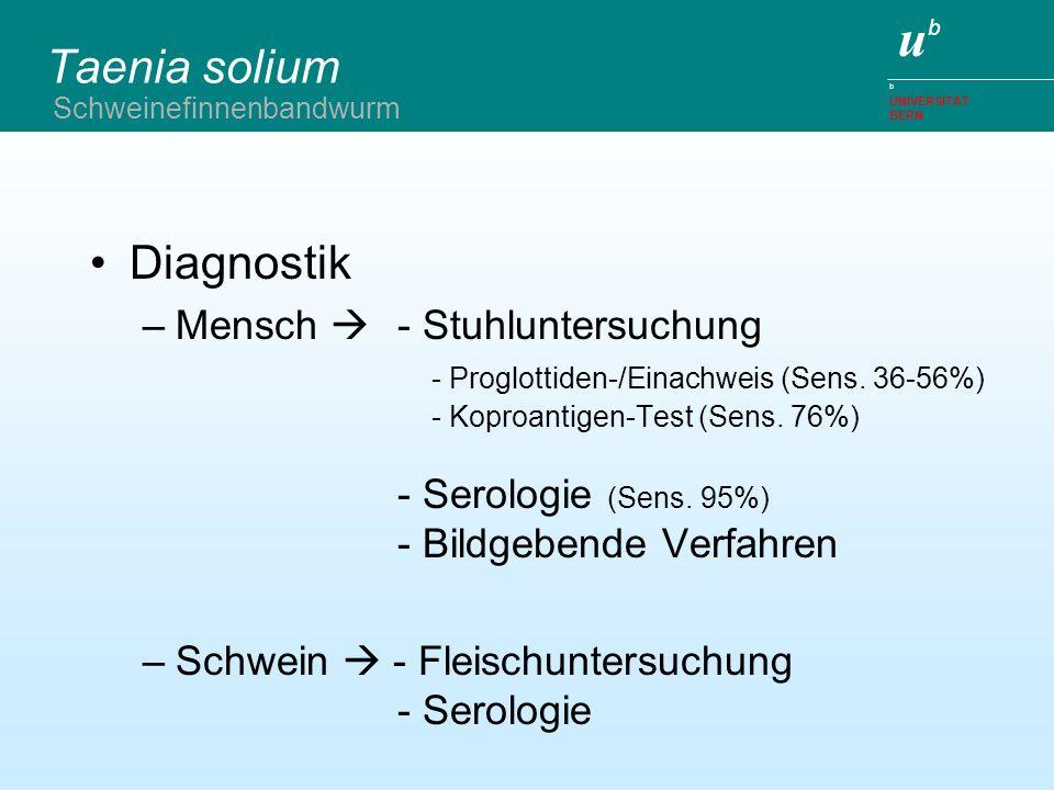 Taenia solium Diagnostik