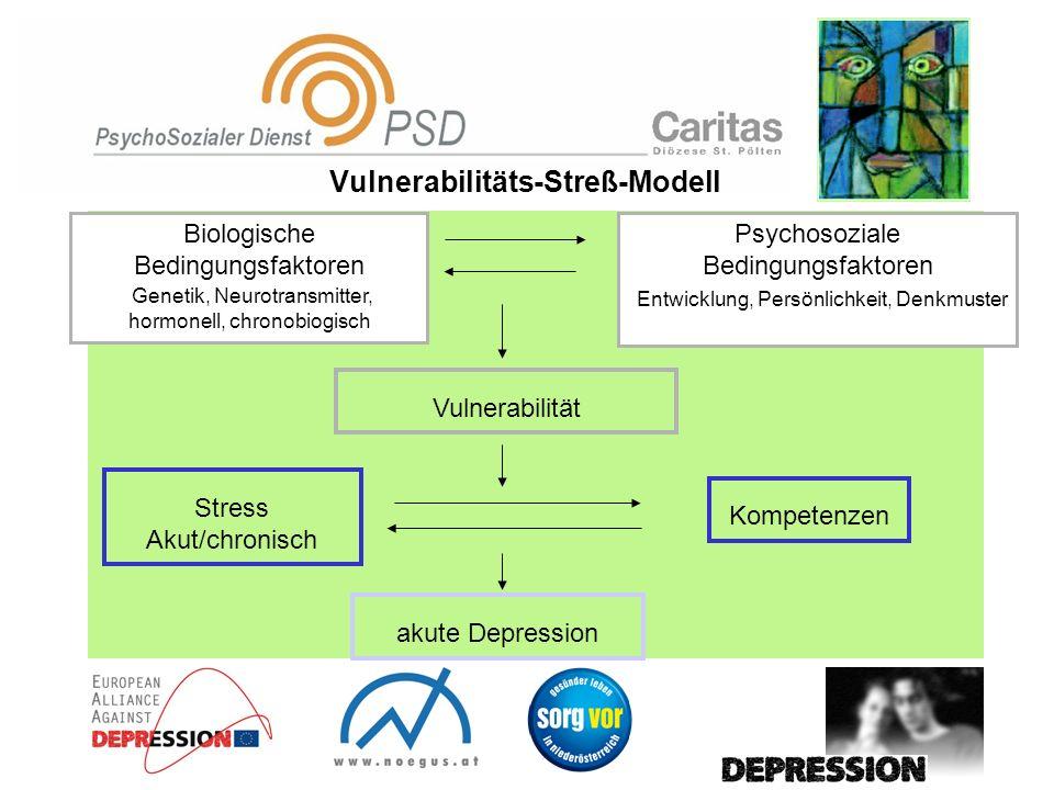 Vulnerabilitäts-Streß-Modell