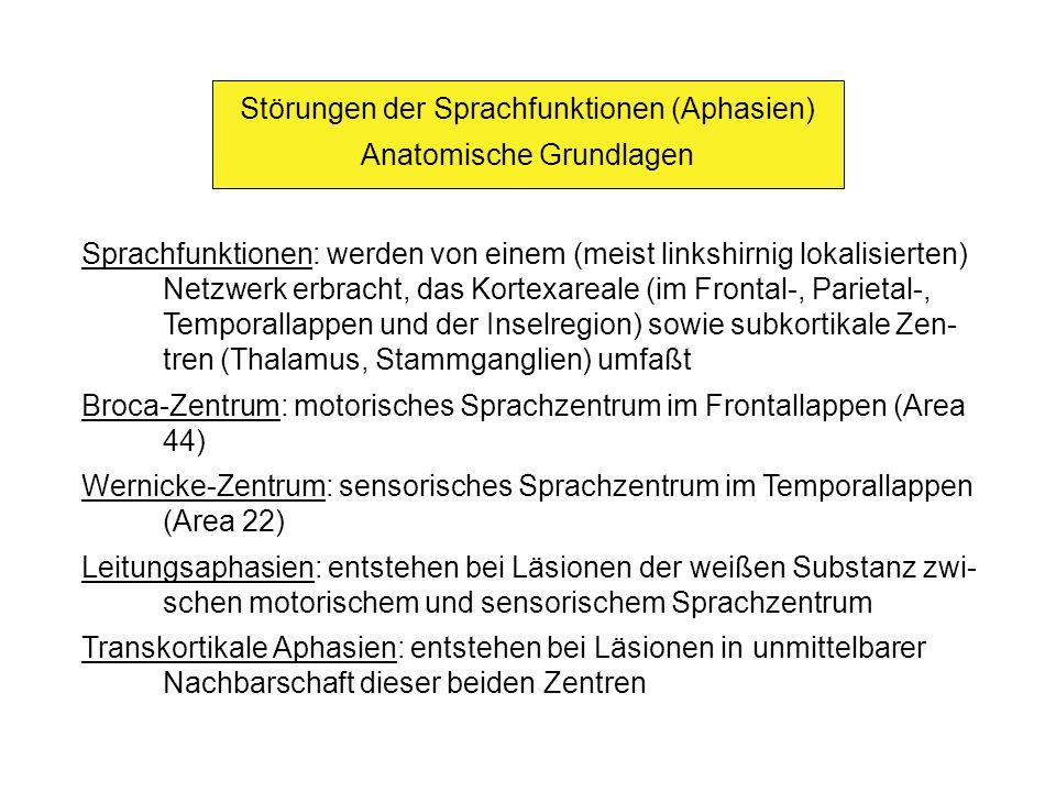 Störungen der Sprachfunktionen (Aphasien) Anatomische Grundlagen