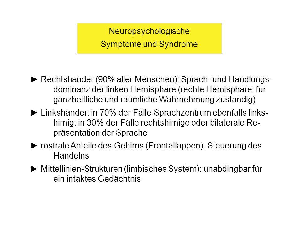Neuropsychologische Symptome und Syndrome. ► Rechtshänder (90% aller Menschen): Sprach- und Handlungs-