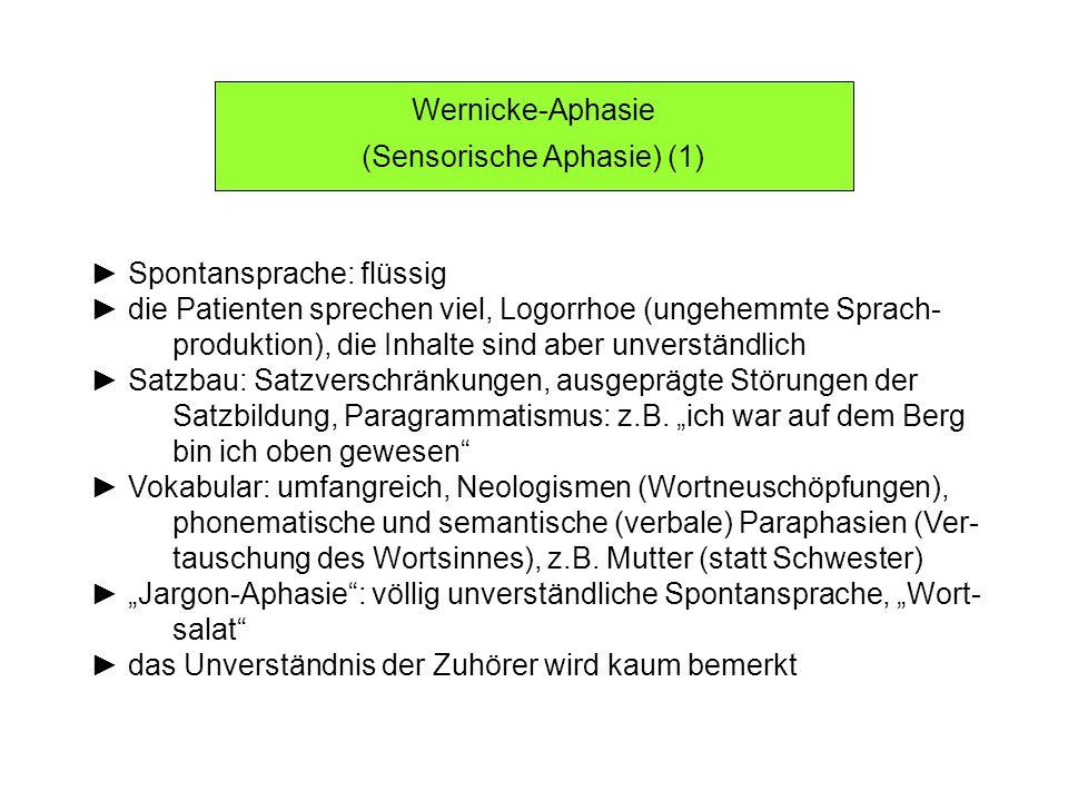 (Sensorische Aphasie) (1)
