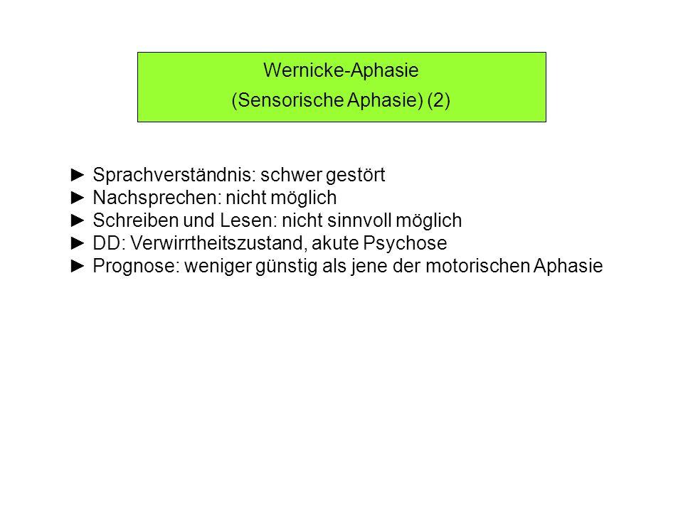 (Sensorische Aphasie) (2)