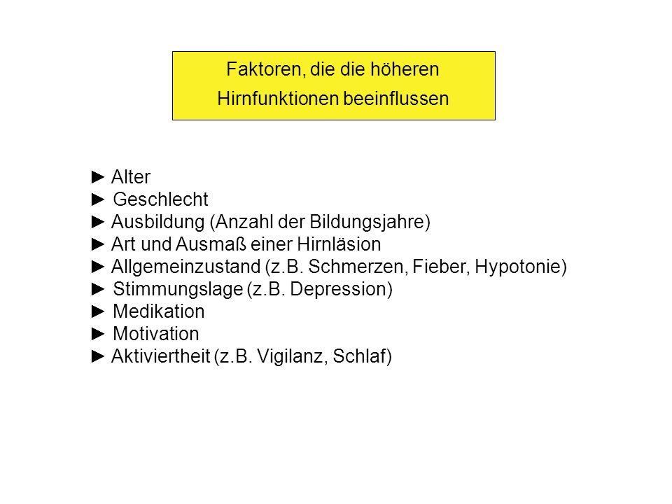 Faktoren, die die höheren Hirnfunktionen beeinflussen