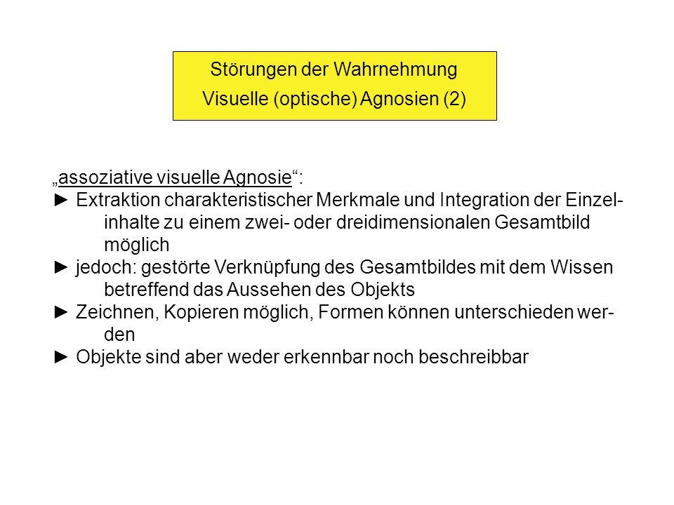 Störungen der Wahrnehmung Visuelle (optische) Agnosien (2)