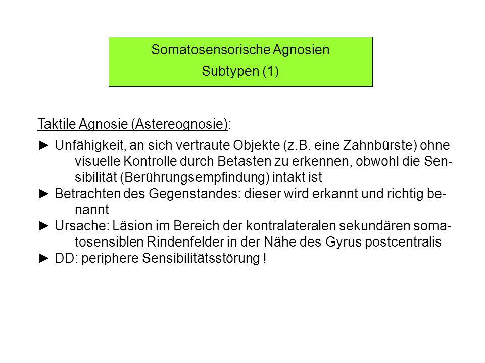 Somatosensorische Agnosien