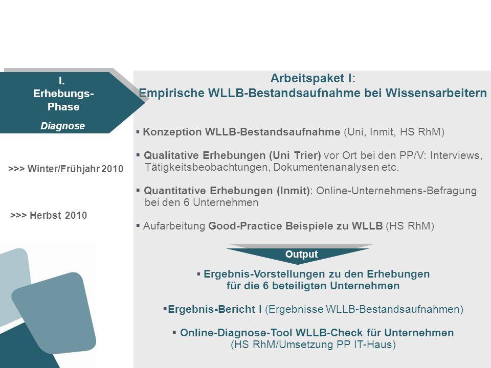 Empirische WLLB-Bestandsaufnahme bei Wissensarbeitern