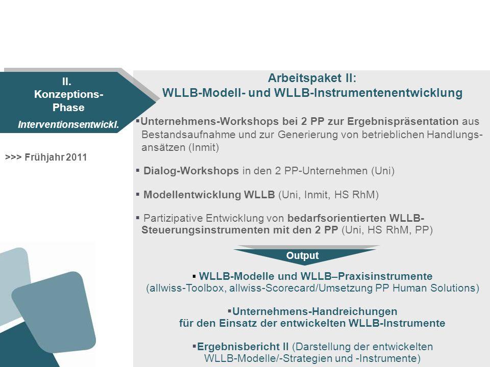 WLLB-Modell- und WLLB-Instrumentenentwicklung