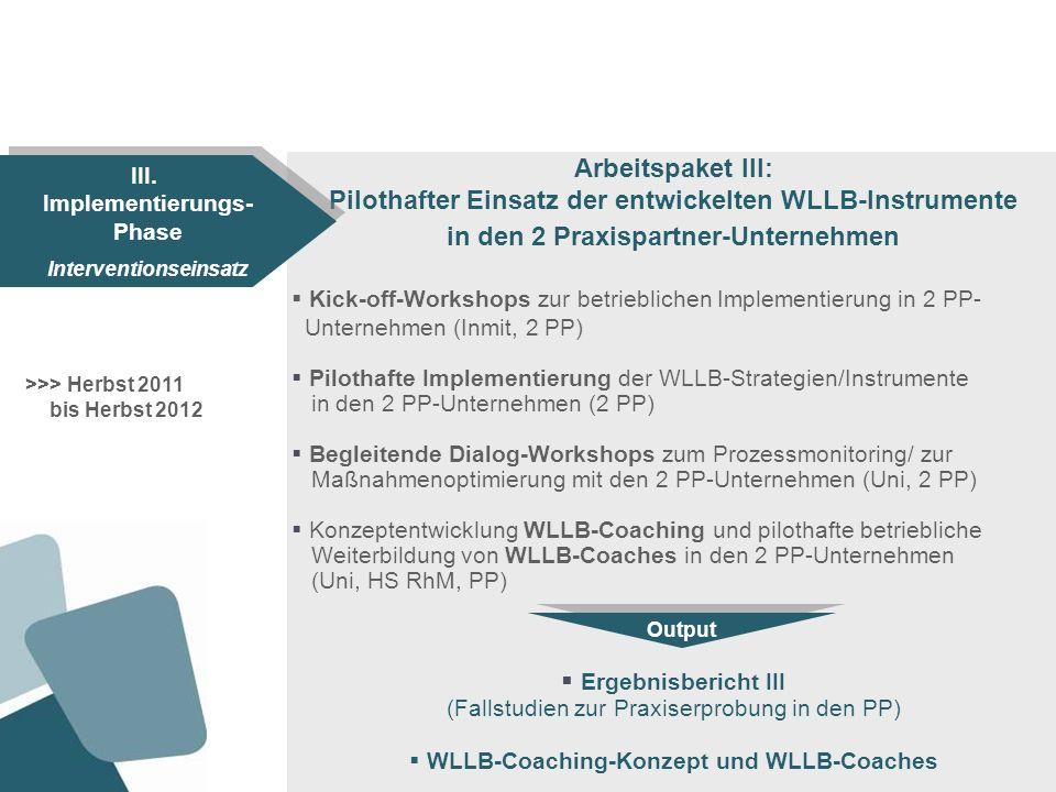 Pilothafter Einsatz der entwickelten WLLB-Instrumente