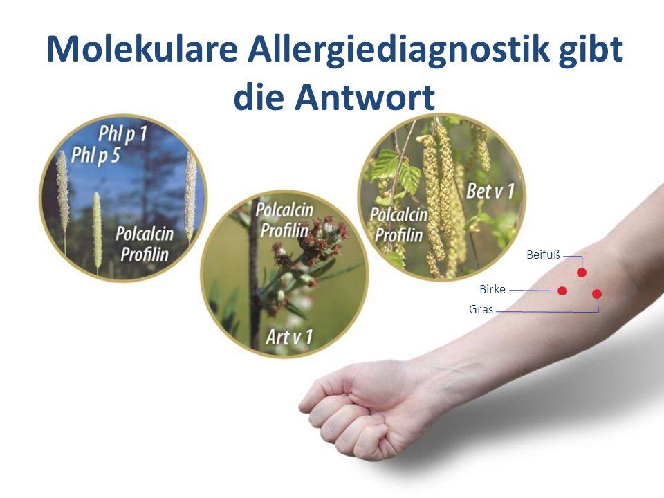 Molekulare Allergiediagnostik gibt die Antwort