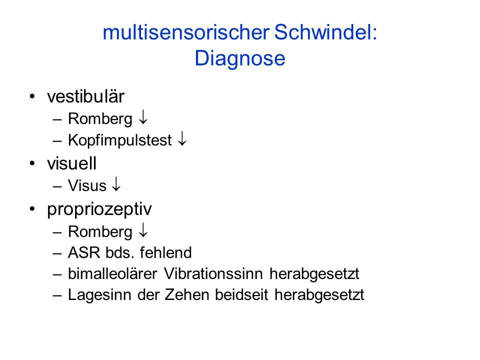 multisensorischer Schwindel: Diagnose