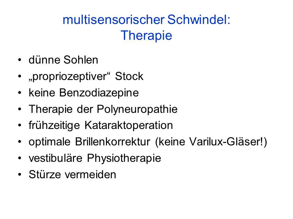 multisensorischer Schwindel: Therapie