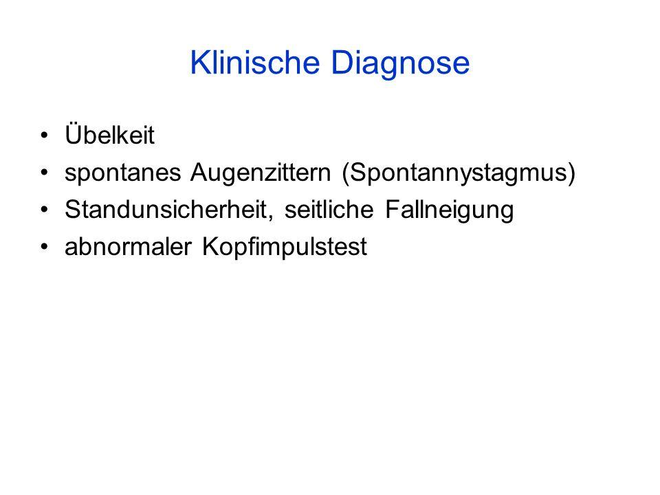 Klinische Diagnose Übelkeit spontanes Augenzittern (Spontannystagmus)