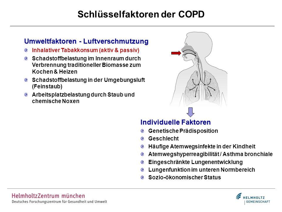 Schlüsselfaktoren der COPD