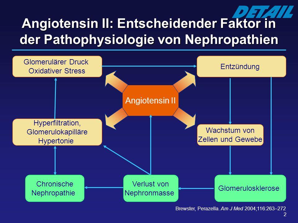 Angiotensin II: Entscheidender Faktor in der Pathophysiologie von Nephropathien