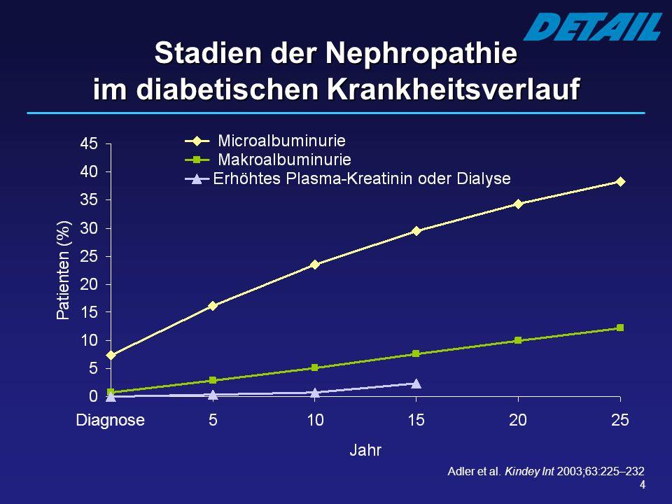 Stadien der Nephropathie im diabetischen Krankheitsverlauf